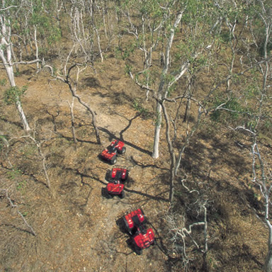 Guided Quad-bike tours