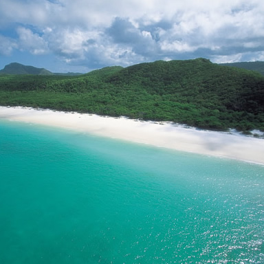 Explore Whitehaven beach